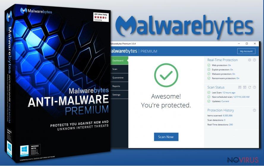 The picture of Malwarebytes Anti-Malware