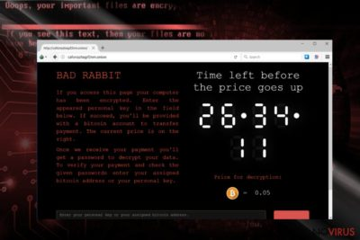 The image revealing BadRabbit payment site