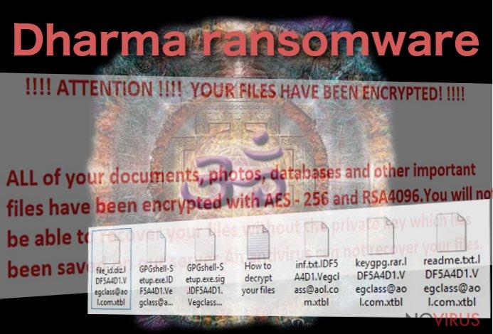 The example of Dharma virus
