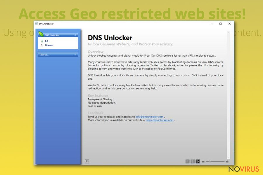 DNS Unlocker virus screenshot