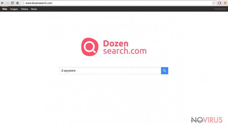 The picture of Dozensearch.com virus