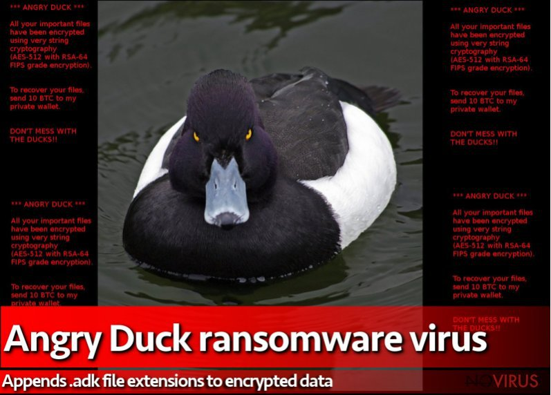 Angry Duck ransomware virus changes a desktop picture