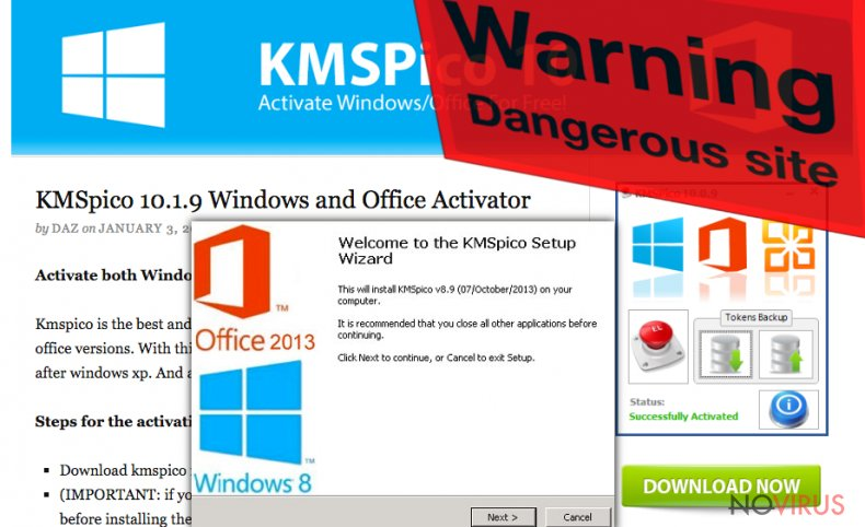 The picture of KMSPico virus