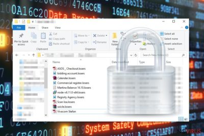 Losers ransomware uses sophisticated algorithms to encrypt data