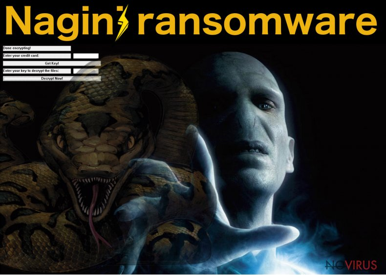 The example of Nagini ransomware