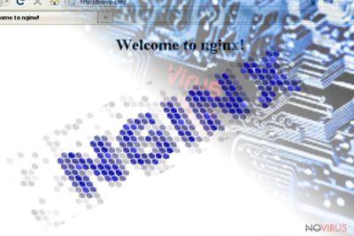 The screnshot illustrating Nginx malware