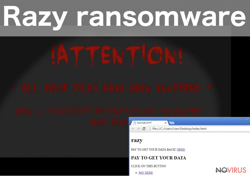 The example of Razy ransomware virus