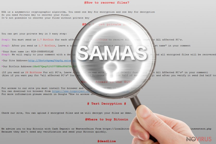 The picture of Samas ransomware