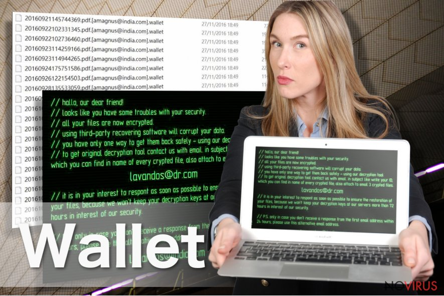 Wallet virus screenshot