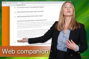 Web companion